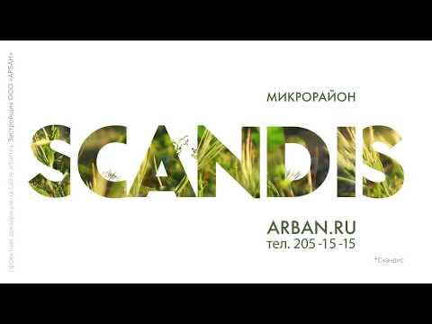 Scandis. Природные дворы на Взлетке