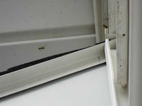 Hornets Nesting Under Siding Wasp Yellowjacket Youtube