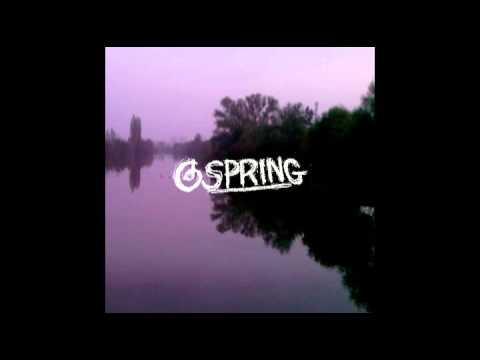 Pyrrhura – Desperate Sound