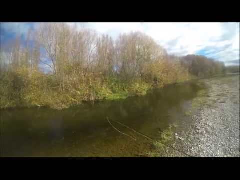 Ireland Tourist Fishing with a Guide. Fly Fishing. Last  Day of Season April 30th