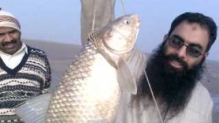 fishing in pakistan(MULTAN) by Hakeem Ziaulhaq Ghouri