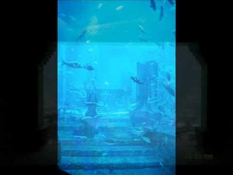 Bloody Roar 4 ost: Aquarium Ruins (Requested)