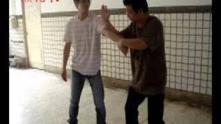 陳氏太極拳精要18式---技擊教學1
