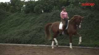 Bella Rose Isabell Werth Training 2011