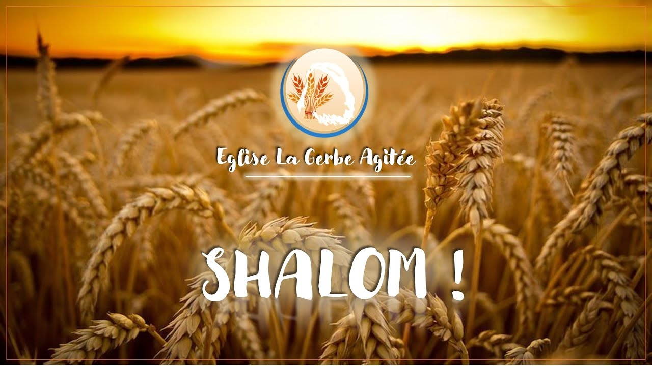 2021-0912 La Reproduction du Grain Original dans l'Epouse Oméga | Fr Russel  Poaty