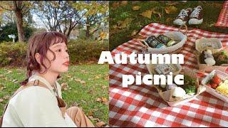 【Vlog】ピクニックにはまっています