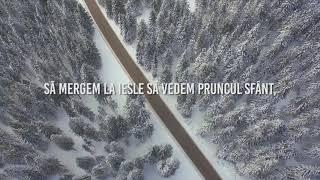 Download lagu Gabi Ilut - Să mergem la iesle