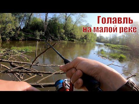 ГОЛАВЛЬ на Красивейшей Малой реке! Рыбалка на спиннинг в Мае 2020