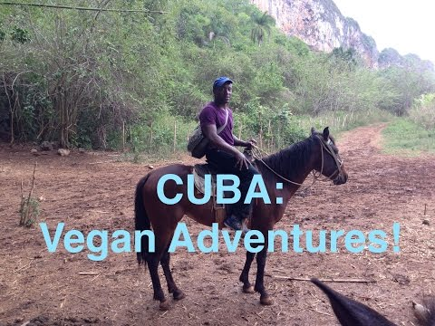 Eating Vegan in Cuba.
