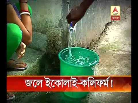 Bacteria of Cholera found in packaged water in South Kolkata