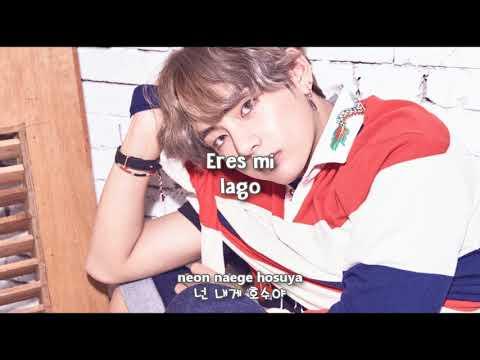 BTS - ILEGAL/DIMPLE (보조개) [Sub Español + Hangul + Rom] HD