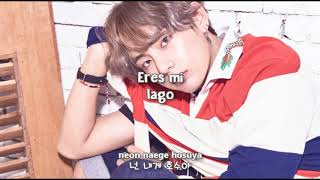Video BTS - ILEGAL/DIMPLE (보조개) [Sub Español + Hangul + Rom] HD download MP3, 3GP, MP4, WEBM, AVI, FLV Agustus 2018