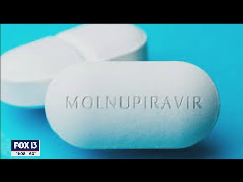 Anti-viral pill molnupiravir shows promise against COVID, other viruses