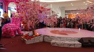 Chinese Lion Dance at grand galaxy park mall