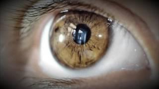 Esto es lo que no Sabes Sobre el Color de Tus Ojos (INCREÍBLE)