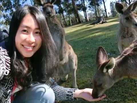 RITA in Australia|20150809~20150906