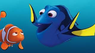 """Fischotter """"Nemo"""" zu Gast im Studio (Teil 03)"""