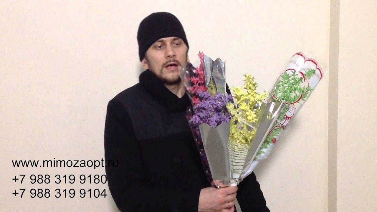 Выгонка тюльпанов. Тюльпаны к 8 марта. Выращивание зимой .