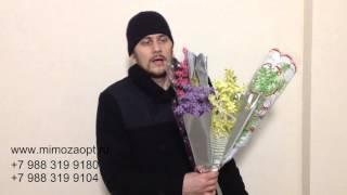 видео где купить тюльпаны в москве