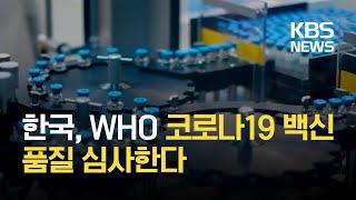[코로나 Q&A] 한국, WHO 코로나19 백신…