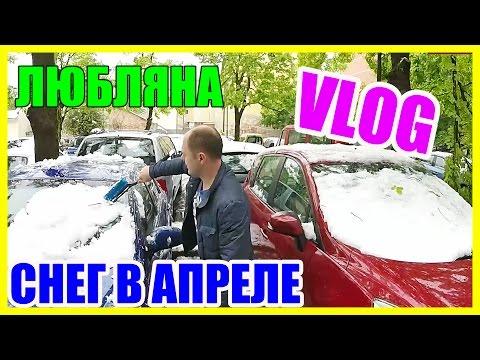Жизнь в Словении || В Любляне Выпал Снег в Апреле!!!