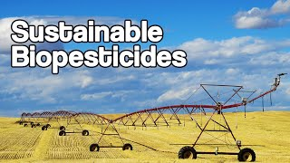 Eliminating Microplastics In Pesticides | Eden Research