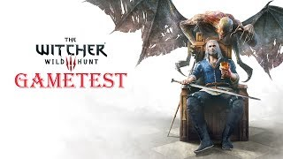 The Witcher 3: Wild Hunt ACER NITRO 5 AN515-51 GAMETEST