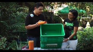 MADE Aquaponics Philippines PTV 4 OA ako Telemagazine (Eng Sub)