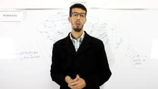 CAFE ECO #EP 02 Introduction à l'économie S1 Circuit économique  Darija