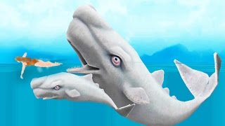 NEW MOBY DICK SHARK Biggest Whale! Hungry Shark Evolution