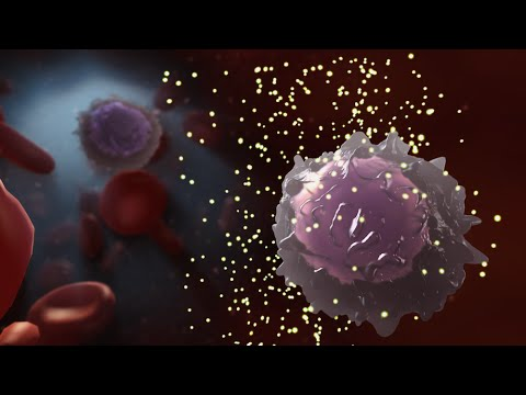 Medical Animation: HIV and AIDS