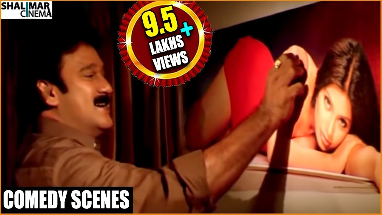 Krishna Bhagavaan Back 2 Back Comedy Scenes || Best Comedy Scenes || Shalimarcinema