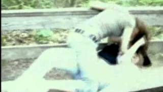 Worlds Most Amazing Videos - Cat Fight