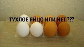 КАК ПРОВЕРИТЬ ТУХЛОЕ ЯЙЦО ИЛИ НЕТ. Эксперименты дома [ПЯТЕРКА.РУ](Наберите холодной воды в любую ёмкость. Опустите туда яйцо. Если яйцо лежит на дне – значит оно свежее. Если..., 2016-03-11T10:37:25.000Z)