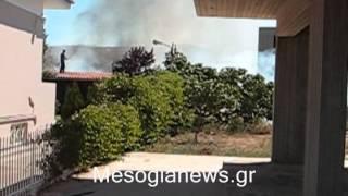 Ο «ντελιβεράς» έκαψε 300στρ  στο Κορωπί