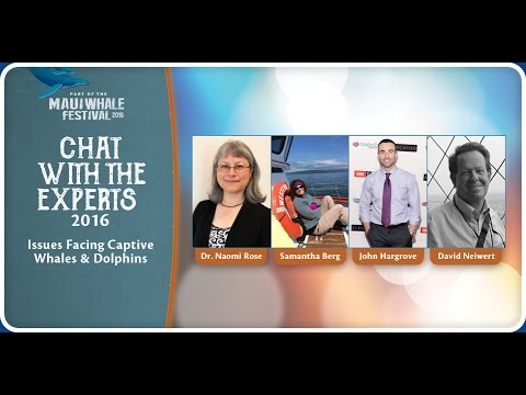 Chat with the Experts 2016: Issues Facing Captive Whales and Dolphins