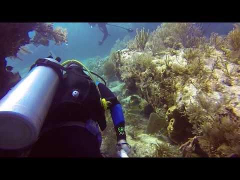 GoPro Miami Scuba Diving in Key Largo Molasses Reef