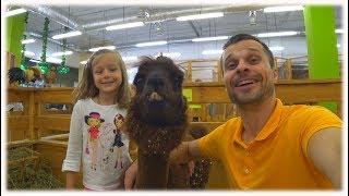 🌼Влог ✌️😸 Контактный Зоопарк #2🐶 - Играем с обезьянками и фоткаемся с Ламой 🦉Видео для детей 🐒🦆