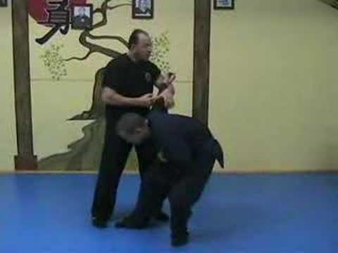 deadly martial arts techniques warning youtube