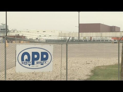 QPP, Hormel Foods Respond to Undercover Video