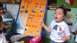 Exposición: LA COSTA PERUANA. DIA DEL LOGRO. Donatella Enge...