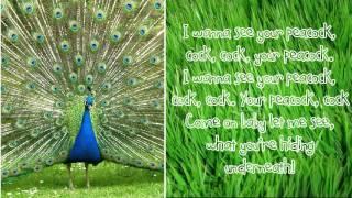 Repeat youtube video Peacock - Katy Perry Lyrics
