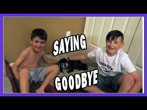 SAYING GOODBYE | ERIKTV365
