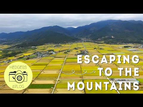 Escaping to the Jirisan Mountains // South Korea (DRONE)