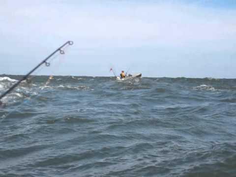 Kayak fishing cape henlopen state park delaware 8 17 13 for Cape henlopen fishing report