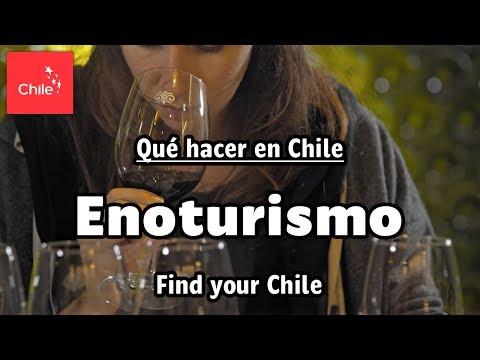 Find your Chile - Enoturismo espera por ti