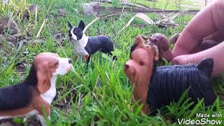 Animal's Survival(EP3)-The Dogs-