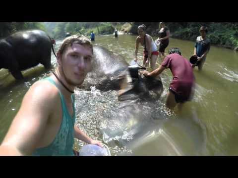 Elephant Nature Park, 15.02.2016 Chiang Mai, Thailand