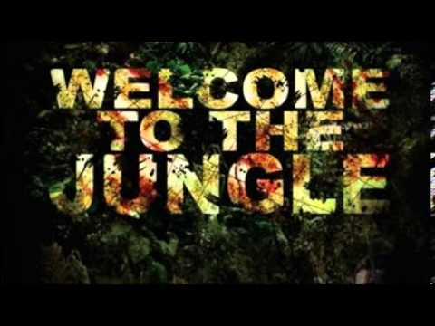 Alvaro Mercer,Martin Garrix feat. Lil Jon  Welcome To The Jungle Animals (Laky MashUp)