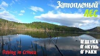 Все таки рыба есть Горлинское водохранилище Крым рыбалка